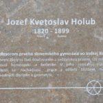 06-01 Holub - web
